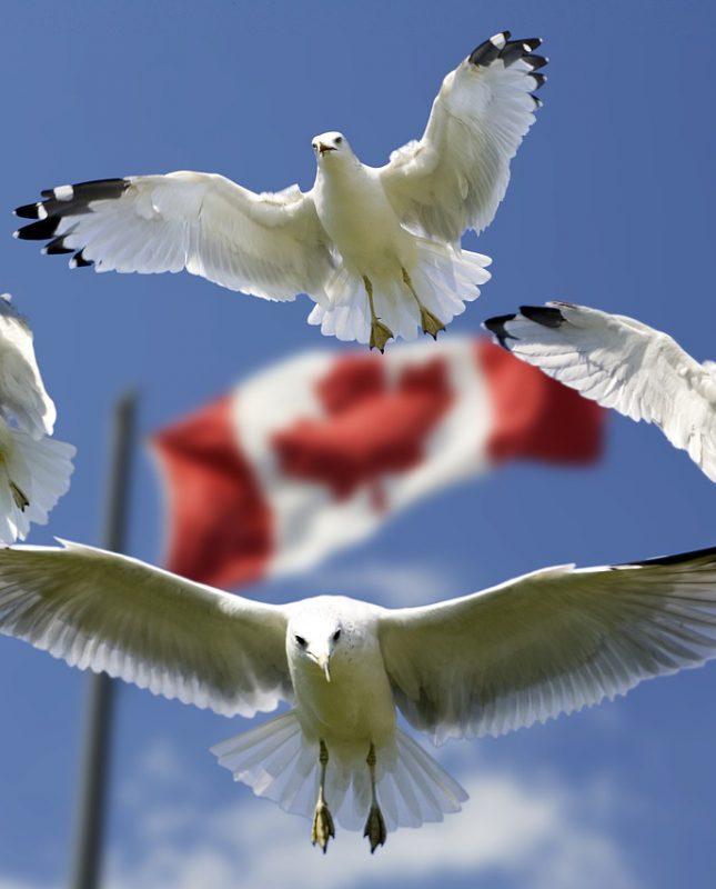 Drapeau Canada - pays de Bewegen