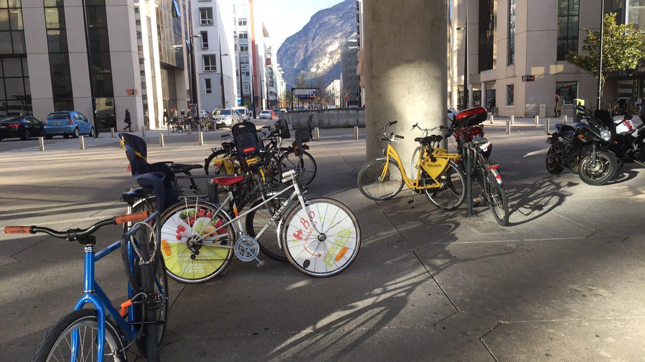 Vélo Ecovelo Bio Carrefour