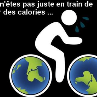 Vélo multi intérêts